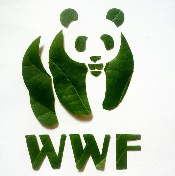 Roy_Mallari_WWF