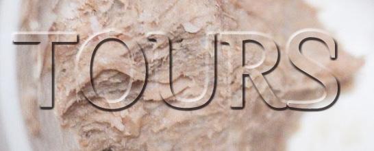logo-tours-oazar