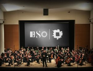 bso_3
